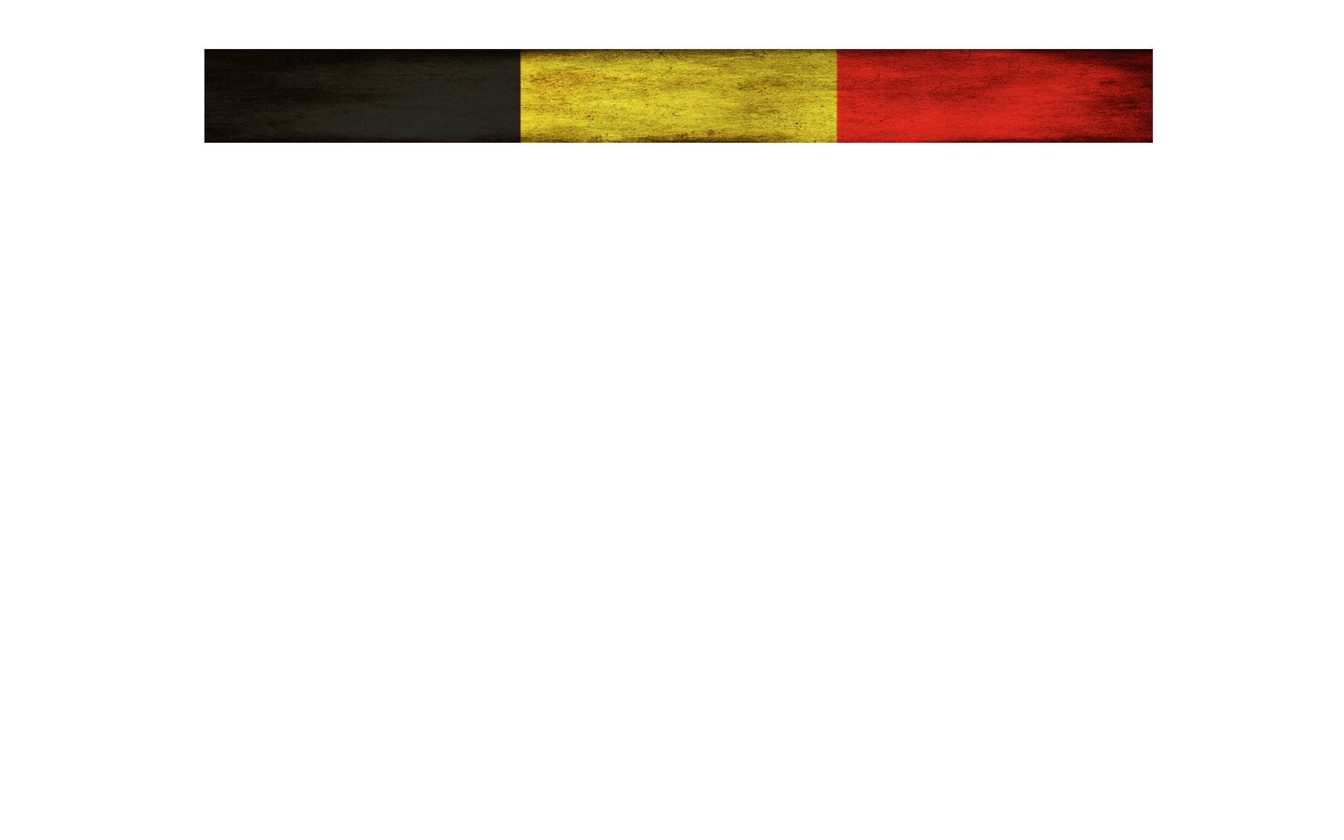 Przeprowadzka do Belgii